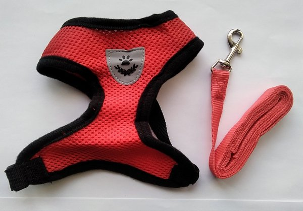 baw- harness (red)